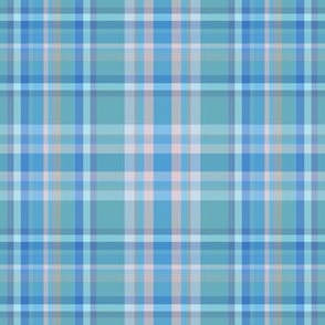 baby blue plaid