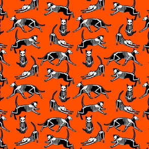 haunted cat skeletons orange and black