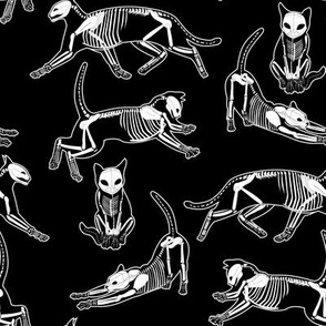 haunted cat skeletons black and white