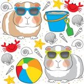 Guinea-pigs-at-the-beach_shop_thumb