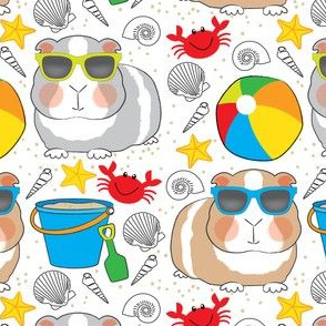 guinea-pigs-at-the-beach