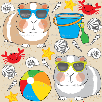 guinea-pigs-at-the-beach-on-tan