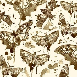 Sepia Splatter Moths