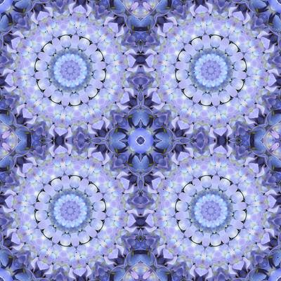 Lavender Hydrangea Pinwheels 1506