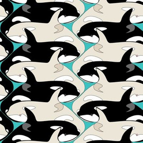 Killer Whale Orca Pod with Albinos