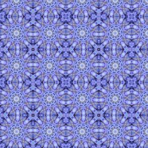 Hydrangeas Kaleidoscope 1463