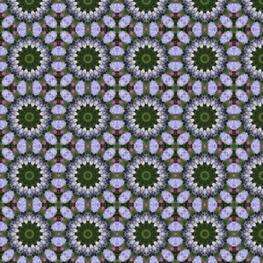Lavender Hydrangea Wheels 1473