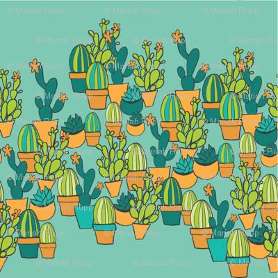 Succulents_cactus_preview