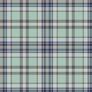 Trendy Lime Sherbet and Navy Plaid 1
