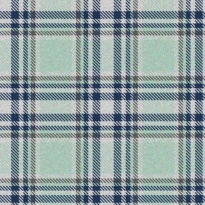 Trendy Lime Sherbet and Navy Plaid 2
