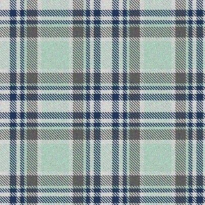 Trendy Lime Sherbet and Navy Plaid 3