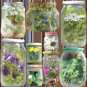 summer_in_a_jar