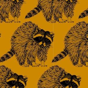 Mustard Gold Raccoons
