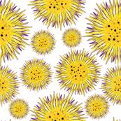 Yellow bright circles
