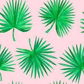 "8"" Bali Green / Pink"
