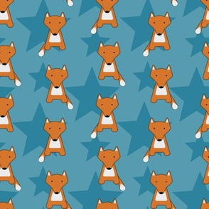 Fox and Stars
