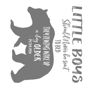"42""x36"" Little Boys Quote - GREY"