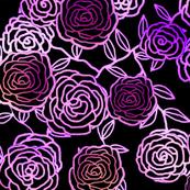 Climbing Roses - plum