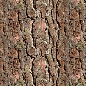Reddish Bark