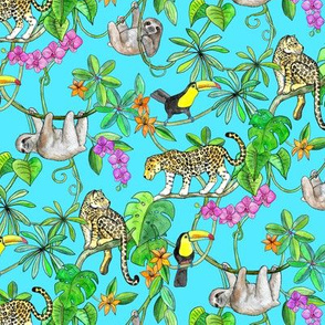 Rainforest Friends - watercolor animals on turquoise - small