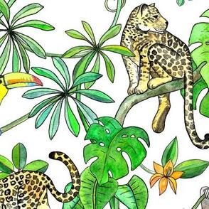 Rainforest Friends - watercolor animals on plain white - large