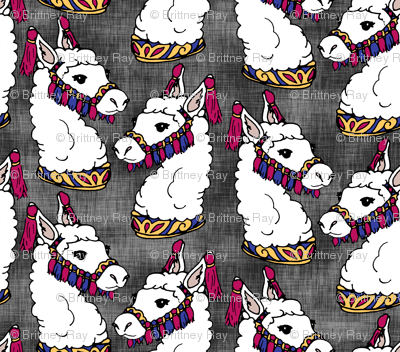 Circus Llamas