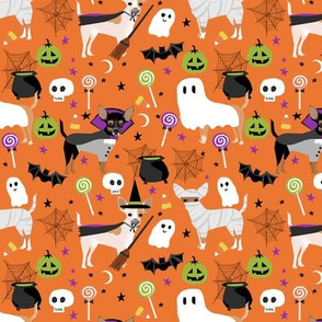 Chihuahua halloween dog breed fabric pattern orange
