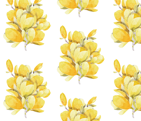 yellow magnolia wallpaper - photo #19
