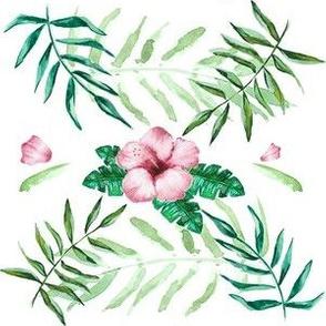 Tropical Hibiskus