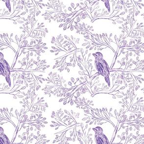 Little Purple Birds