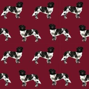 stabyhoun dog fabric stabij dog design - ruby red