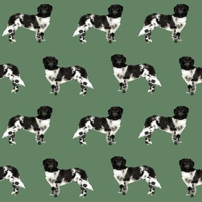 stabyhoun dog fabric stabij dog design - med green