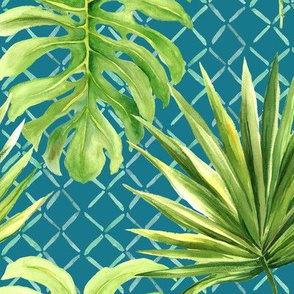 Jungle Time on Aqua