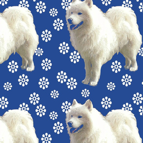sammy_and_snowflakes