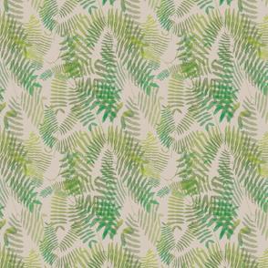 Mimosoideae06a