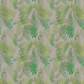 Mimosoideae06b