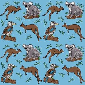 kangaroo_koala_kookaburra_22