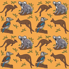kangaroo_koala_kookaburra_24