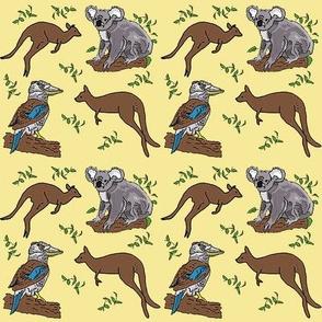 kangaroo_koala_kookaburra_25