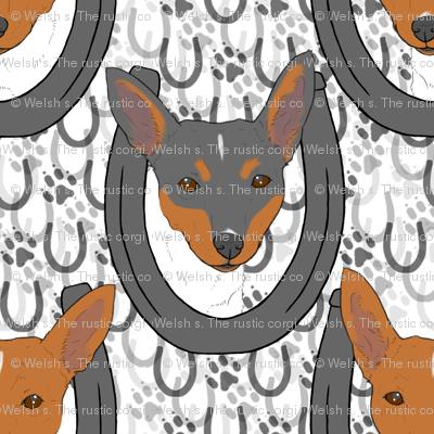 Toy Fox Terrier horseshoe portraits
