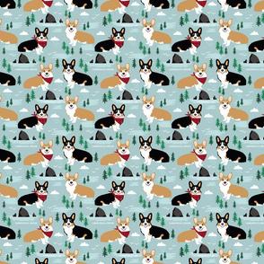 corgi cannon beach corgi and tricolored corgis in oregon travel dog