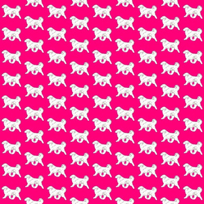 kara mckean gold retriever on pink background