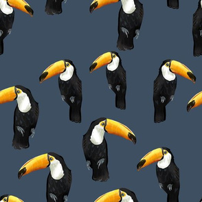 Toucan Party on Blue - Larger Scale