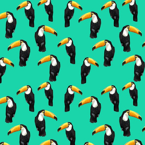 Toucan Party on Dark Mint