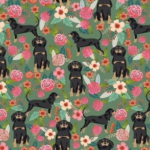 Coonhound black and tan dog breed floral green