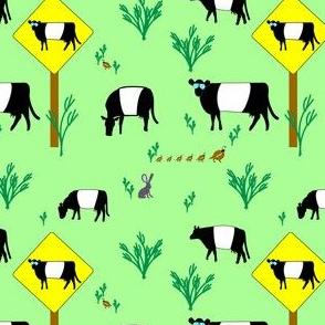 Highway Patrol Cows