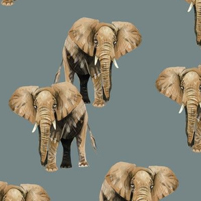 Elephants on Greyish Blue