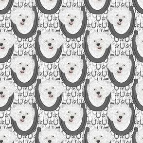 West Highland White Terrier horseshoe portraits