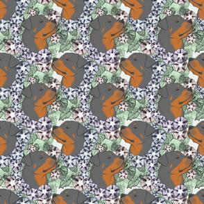 Floral Rottweiler portraits
