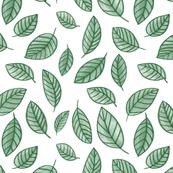 Crayon Leaf